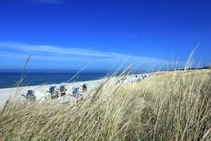 Die Kiteschule in Dierhagen befindet sich in unmittelbarer Nähe zur Ostsee